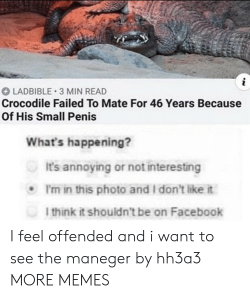 i dont like it: LADBIBLE 3 MIN READ  Crocodile Failed To Mate For 46 Years Because  Of His Small Penis  What's happening?  It's annoying or not interesting  I'm in this photo and I don't like it  I think it shouldn't be on Facebook I feel offended and i want to see the maneger by hh3a3 MORE MEMES