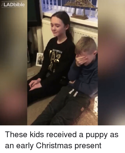 Early Christmas Present Meme.Ladbible These Kids Received A Puppy As An Early Christmas