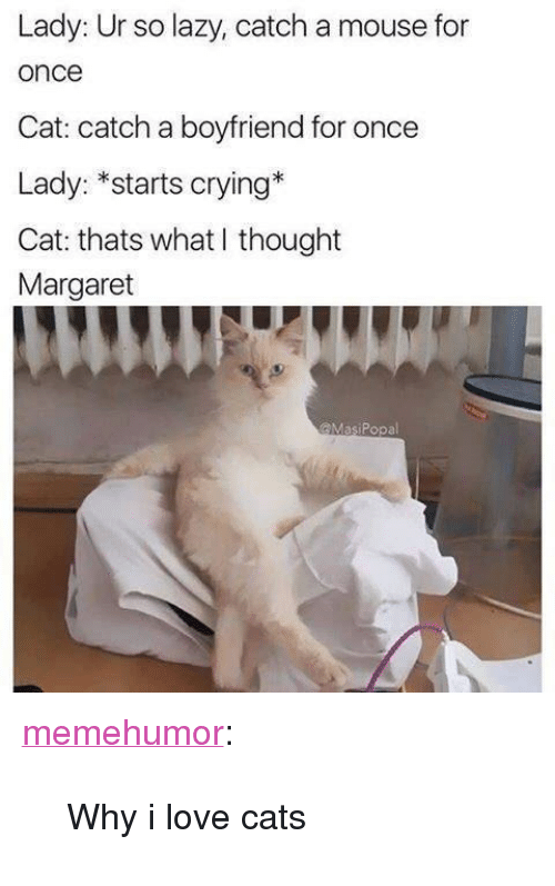 """What I Thought: Lady: Ur so lazy, catch a mouse for  once  Cat: catch a boyfriend for once  Lady: *starts crying*  Cat: thats what I thought  Margaret  @MasiPopal <p><a href=""""http://memehumor.net/post/171341743121/why-i-love-cats"""" class=""""tumblr_blog"""">memehumor</a>:</p>  <blockquote><p>Why i love cats</p></blockquote>"""