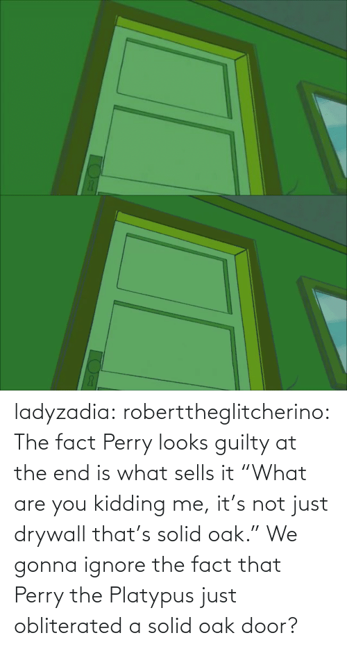 "door: ladyzadia:  roberttheglitcherino: The fact Perry looks guilty at the end is what sells it  ""What are you kidding me, it's not just drywall that's solid oak."" We gonna ignore the fact that Perry the Platypus just obliterated a solid oak door?"