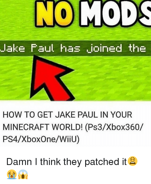 wiiu: lake Faul has joined the  HOW TO GET JAKE PAUL IN YOUR  MINECRAFT WORLD! (Ps3/Xbox360/  PS4/XboxOne/WiiU) Damn I think they patched it😩😭😱