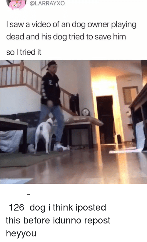 Memes, Saw, and Video: @LARRAYXO  I saw a video of an dog owner playing  dead and his dog tried to save him  so l tried it  2 𝔄 𝔟𝔲𝔱𝔱𝔩𝔬𝔞𝔡 𝔦𝔰 𝔞𝔫 𝔞𝔠𝔱𝔲𝔞𝔩 𝔲𝔫𝔦𝔱 𝔬𝔣 𝔪𝔢𝔞𝔰𝔲𝔯𝔢𝔪𝔢𝔫𝔱 -𝔈𝔮𝔲𝔞𝔩 𝔱𝔬 126 𝔤𝔞𝔩𝔩𝔬𝔫𝔰 dog i think iposted this before idunno repost heyyou