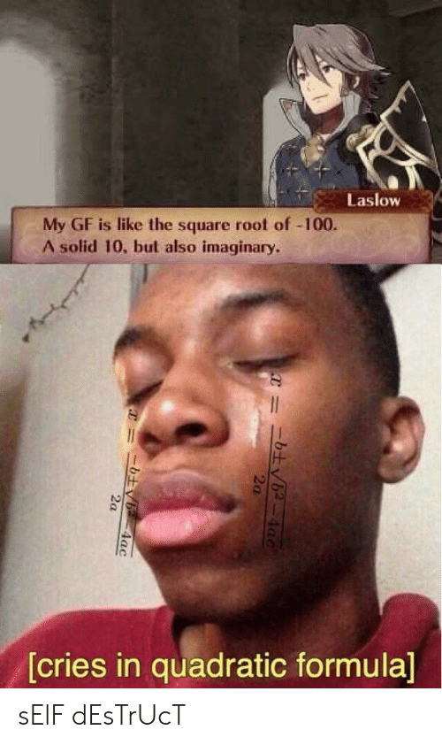 Cries In: Laslow  My GF is like the square root of -100.  A solid 10, but also imaginary.  [cries in quadratic formula]  4ac  2a  =ニ土v6-4ac sElF dEsTrUcT