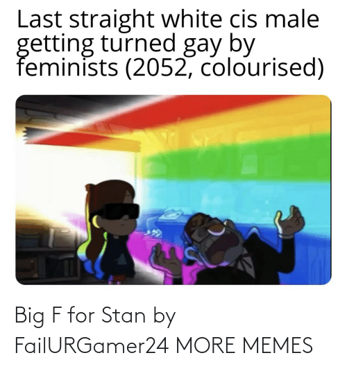 Stan: Last straight white cis male  getting turned gay by  feminists (2052, colourised) Big F for Stan by FailURGamer24 MORE MEMES
