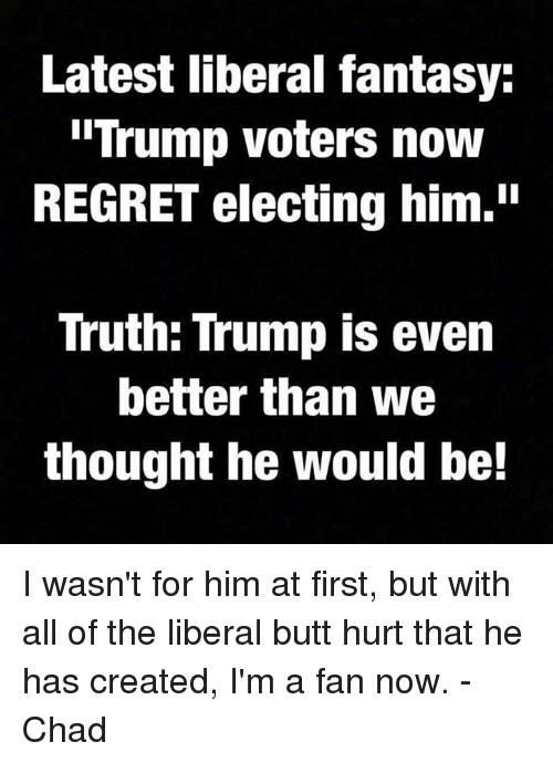 "Trump Voters: Latest liberal fantasy:  Trump voters now  REGRET electing him.""  Truth: Trump is even  better than we  thought he would be! I wasn't for him at first, but with all of the liberal butt hurt that he has created, I'm a fan now.  -Chad"