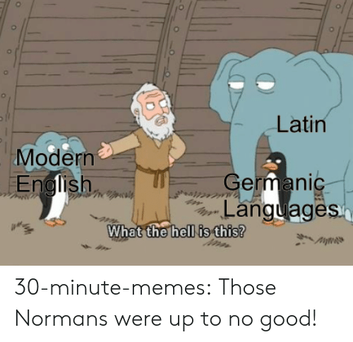 normans: Latin  Modern  German  Languages  hell is this?  What the 30-minute-memes:  Those Normans were up to no good!