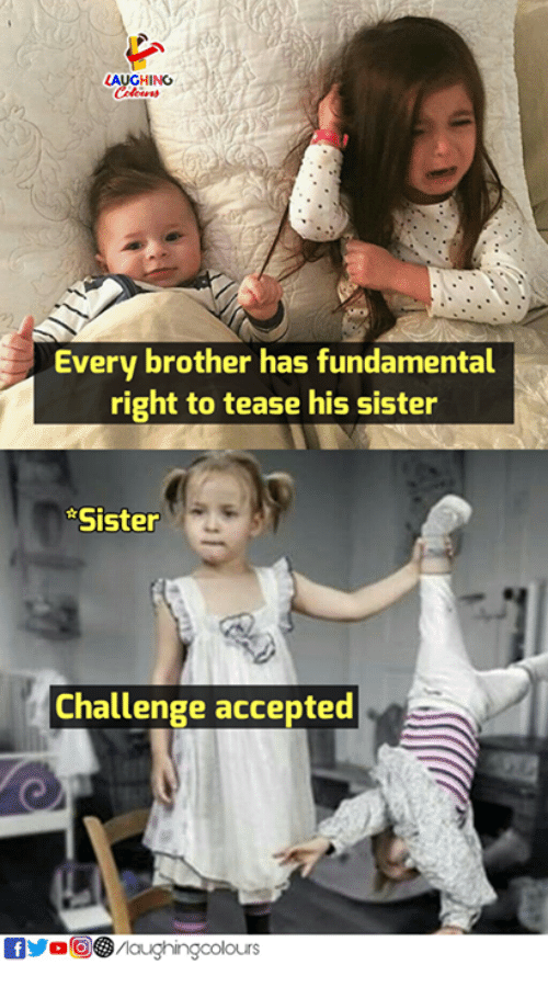 Sister, Sister, Indianpeoplefacebook, and Accepted: LAUGHING  Every brother has fundamental  right to tease his sister  Sister  Challenge accepted