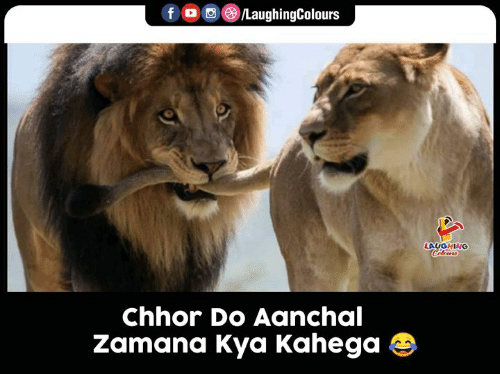 kya: LaughingColours  f  LAUGHING  Celows  Chhor Do Aanchal  Zamana Kya Kahega