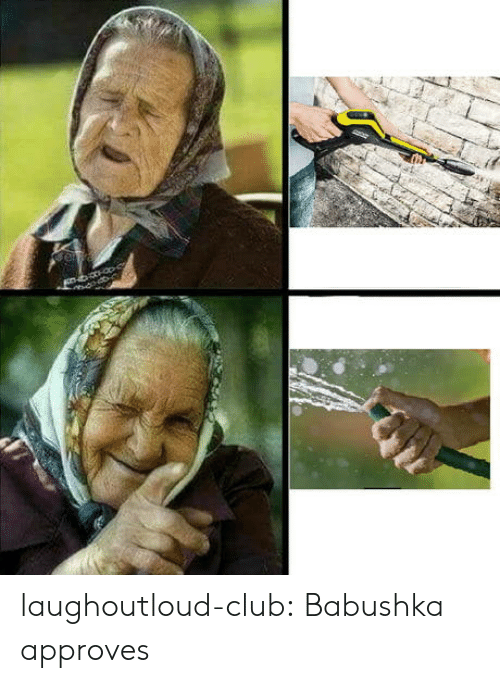 Approves: laughoutloud-club:  Babushka approves