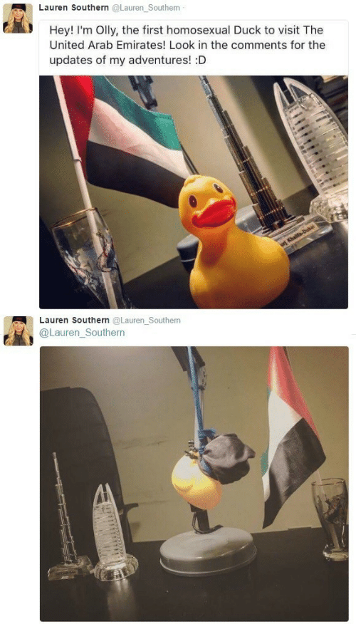 Duck, Emirates, and United: Lauren Southern @Lauren Southern  Hey! I'm Olly, the first homosexual Duck to visit The  United Arab Emirates! Look in the comments for the  updates of my adventures! :D  Lauren Southern @Lauren_Southern  @Lauren_Southern