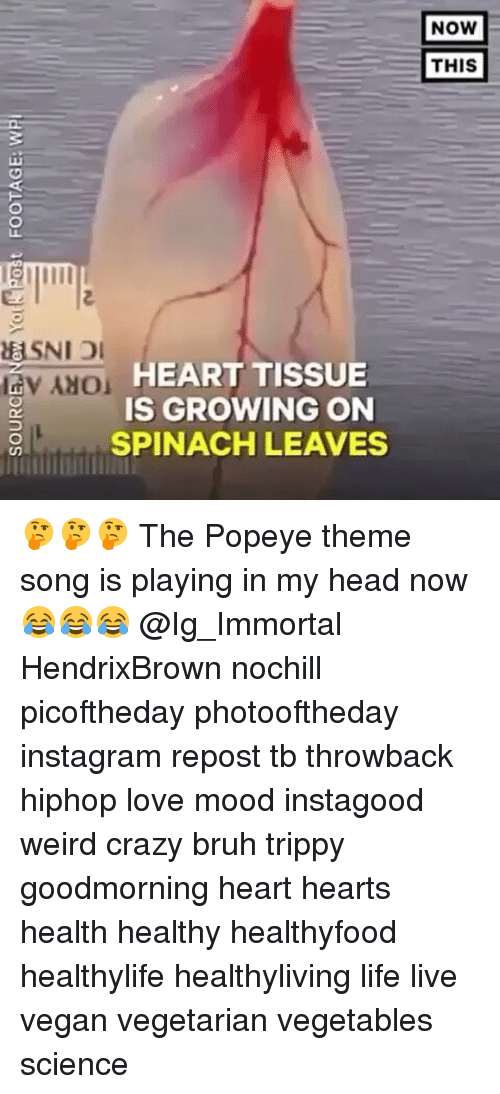 Bruh, Crazy, and Head: lav NO HEART TISSUE  IS GROWING ON  SPINACH LEAVES  NOW  THIS 🤔🤔🤔 The Popeye theme song is playing in my head now 😂😂😂 @Ig_Immortal HendrixBrown nochill picoftheday photooftheday instagram repost tb throwback hiphop love mood instagood weird crazy bruh trippy goodmorning heart hearts health healthy healthyfood healthylife healthyliving life live vegan vegetarian vegetables science
