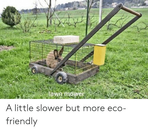 eco friendly: lawg mower A little slower but more eco-friendly