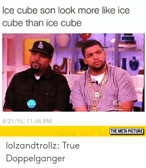 Ice Cube: lce cube son look more like ice  cube than ice cube  i4  EW  8/21/15, 11:48 PM  THE META PICTURE lolzandtrollz:  True Doppelganger