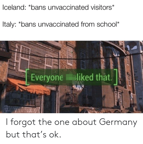 School, Germany, and One: lceland: *bans unvaccinated visitors*  ltaly: *bans unvaccinated from school*  Everyone liked that. I forgot the one about Germany but that's ok.
