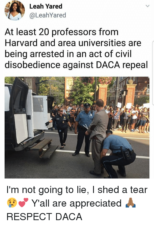 sheds: Leah Yared  @LeahYared  At least 20 professors from  Harvard and area universities are  being arrested in an act of civil  disobedience against DACA repeal  2 I'm not going to lie, I shed a tear 😢💕 Y'all are appreciated 🙏🏾 RESPECT DACA