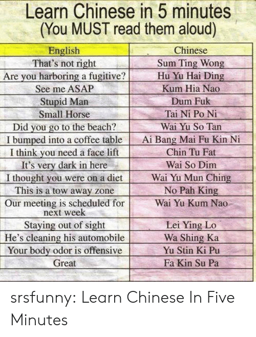 pah: Learn Chinese in 5 minutes  (You MUST read them aloud)  English  That's not right  Are you harboring a fugitive?  See me ASAP  Stupid Marn  Small Horse  Did you go to the beach?  I bumped into a coffee table  I think vou need a face lift  It's very dark in here  I thought you were on a diet  This is a tow away zone  Our meeting is scheduled for  Chinese  Sum Ting Wong  Hu Yu Hai Ding  Kum Hia Nao  Dum Fuk  Tai Ni Po Ni  Wai Yu So Tan  Ai Bang Mai Fu Kin N  Chin Tu Fat  Wai So Dim  Wai Yu Mun Ching  No Pah King  Wai Yu Kum Nao  next week  Staying out of sight  He's cleaning his automobile  Your body odor is offensive  Great  Lei Ying Lo  Wa Shing Ka  Yu Stin Ki Pu  Fa Kin Su Pa srsfunny:  Learn Chinese In Five Minutes