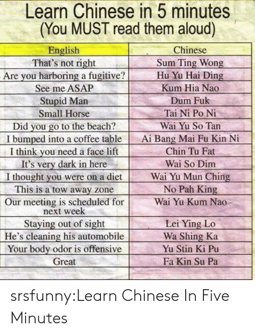 pah: Learn Chinese in 5 minutes  (You MUST read them aloud)  English  That's not right  Are you harboring a fugitive?  See me ASAP  Stupid Marn  Small Horse  Did you go to the beach?  I bumped into a coffee table  I think vou need a face lift  It's very dark in here  I thought you were on a diet  This is a tow away zone  Our meeting is scheduled for  Chinese  Sum Ting Wong  Hu Yu Hai Ding  Kum Hia Nao  Dum Fuk  Tai Ni Po Ni  Wai Yu So Tan  Ai Bang Mai Fu Kin N  Chin Tu Fat  Wai So Dim  Wai Yu Mun Ching  No Pah King  Wai Yu Kum Nao  next week  Staying out of sight  He's cleaning his automobile  Your body odor is offensive  Great  Lei Ying Lo  Wa Shing Ka  Yu Stin Ki Pu  Fa Kin Su Pa srsfunny:Learn Chinese In Five Minutes