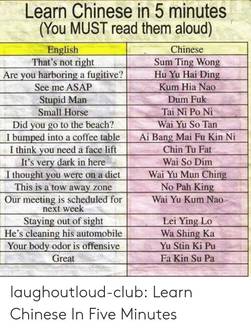 pah: Learn Chinese in 5 minutes  (You MUST read them aloud)  English  That's not right  Are you harboring a fugitive?  See me ASAP  Stupid Marn  Small Horse  Did you go to the beach?  I bumped into a coffee table  I think vou need a face lift  It's very dark in here  I thought you were on a diet  This is a tow away zone  Our meeting is scheduled for  Chinese  Sum Ting Wong  Hu Yu Hai Ding  Kum Hia Nao  Dum Fuk  Tai Ni Po Ni  Wai Yu So Tan  Ai Bang Mai Fu Kin N  Chin Tu Fat  Wai So Dim  Wai Yu Mun Ching  No Pah King  Wai Yu Kum Nao  next week  Staying out of sight  He's cleaning his automobile  Your body odor is offensive  Great  Lei Ying Lo  Wa Shing Ka  Yu Stin Ki Pu  Fa Kin Su Pa laughoutloud-club:  Learn Chinese In Five Minutes