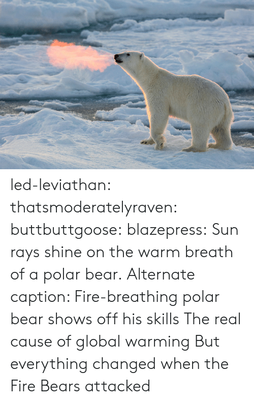 Breathed: led-leviathan:  thatsmoderatelyraven: buttbuttgoose:  blazepress:  Sun rays shine on the warm breath of a polar bear.  Alternate caption: Fire-breathing polar bear shows off his skills  The real cause of global warming   But everything changed when the Fire Bears attacked