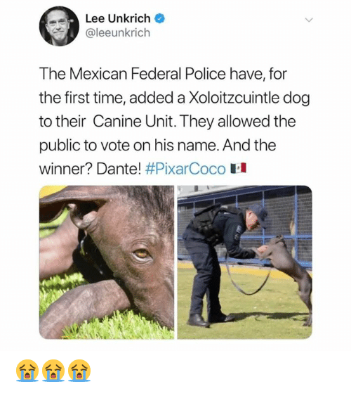 Memes, Police, and Time: Lee Unkrich  @leeunkrich  The Mexican Federal Police have, for  the first time, added a Xoloitzcuintle dog  to their Canine Unit. They allowed the  public to vote on his name. And the  winner? Dante! #PixarCoco H 😭😭😭