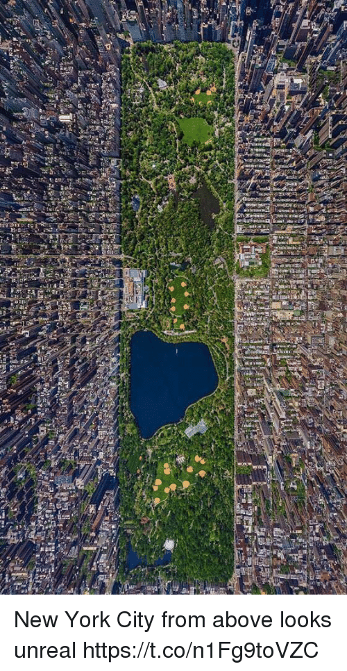 New York, Girl Memes, and New York City: lef New York City from above looks unreal https://t.co/n1Fg9toVZC
