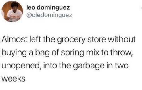 Spring, Leo, and Garbage: leo dominguez  @oledominguez  LGAT  Almost left the grocery store without  buying a bag of spring mix to throw,  unopened, into the garbage in two  weeks