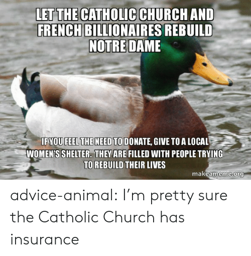catholic church: LET THE CATHOLIC CHURCH AND  FRENCH BILLIONAIRES REBUILD  NOTRE DAME  IFYOU FEELTHE NEED TO DONATE, GIVE TOA LOCAL  WOMEN'S SHELTER. THEY ARE FILLED WITH PEOPLE TRYING  TO REBUILD THEIR LIVES  makeameme org advice-animal:  I'm pretty sure the Catholic Church has insurance