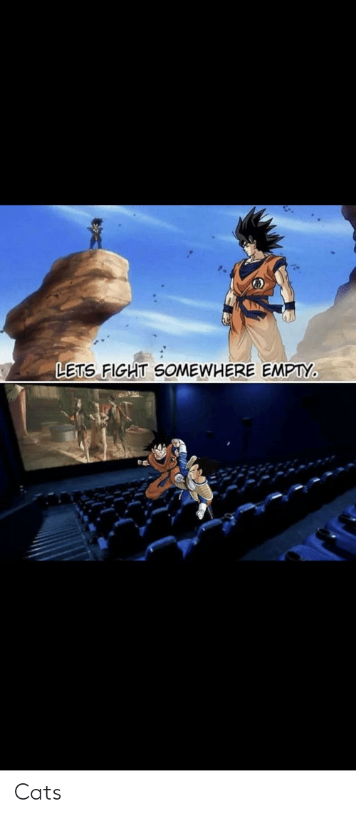 somewhere: LETS FIGHT SOMEWHERE EMPTY. Cats