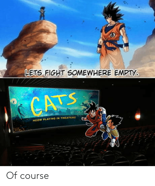Cats: LETS FIGHT SOMEWHERE EMPTY.  CATS  MEOW PLAYING IN THEATERS Of course
