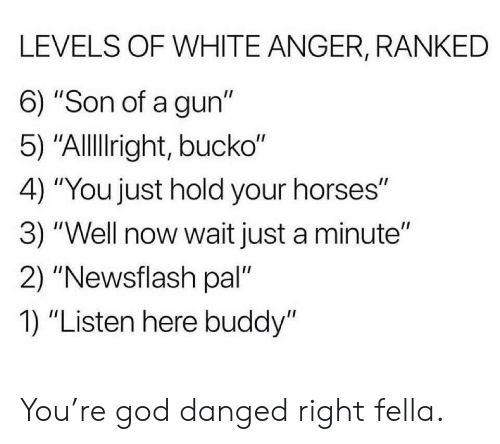 "God, Horses, and White: LEVELS OF WHITE ANGER, RANKED  6) ""Son of a gun""  5) ""Allright, bucko""  4) ""You just hold your horses""  3) ""Well now wait just a minute""  2) ""Newsflash pal""  1) ""Listen here buddy"" You're god danged right fella."