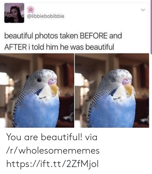 before and after: @libbiebobibbie  beautiful photos taken BEFORE and  AFTER told him he was beautiful You are beautiful! via /r/wholesomememes https://ift.tt/2ZfMjol