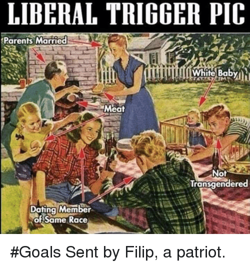 Triggere: LIBERAL TRIGGER PIC  Parents Married  Meat  Not  Transqender  Dating Member  of Same Race #Goals  Sent by Filip, a patriot.