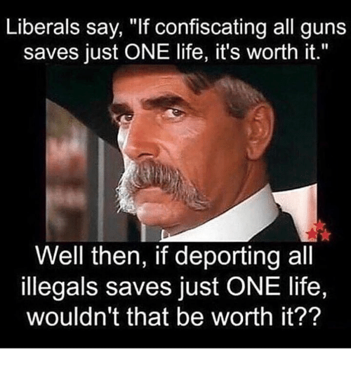 "Guns, Life, and One: Liberals say, ""If confiscating all guns  saves just ONE life, it's worth it.""  Well then, if deporting all  illegals saves just ONE life,  wouldn't that be worth it??"