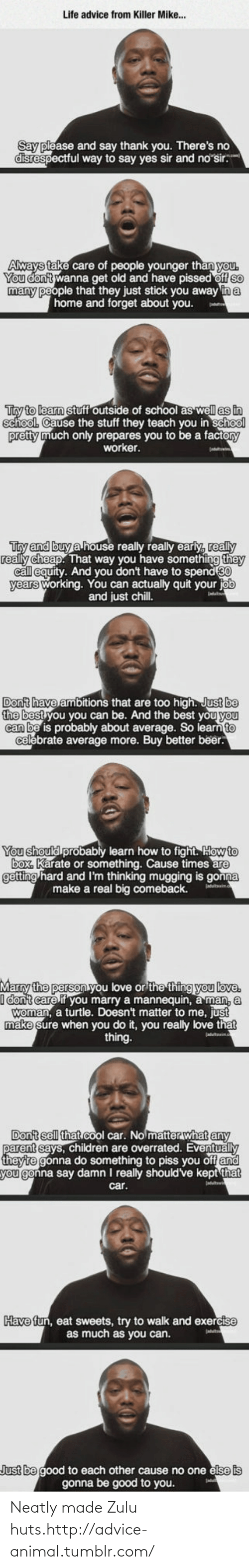 Ambitions: Life advice from Killer Mike...  Say please and say thank you. There's no  disrespectful way to say yes sir and no sir.  Aways take care of people younger than you.  You don't wanna get old and have pissed off so  many people that they just stick you away in a  home and forget about you.  Try to learn stuff outside of school as well as in  school. Cause the stuff they teach you in school  pretty much only prepares you to be a factory  worker.  Try and buy a house really really early, really  really cheap. That way you have something they  call equity. And you don't have to spend 80  years working. You can actually quit your job  and just chill.  Don't have ambitions that are too high. Just be  the best you you can be. And the best you you  can be is probably about average. So learn to  celebrate average more. Buy better beer.  You should probably learn how to fight. How to  box. Karate or something. Cause times are  getting hard and I'm thinking mugging is gonna  make a real big comeback.  Marry the person you love or the thing you love.  I dont care if you marry a mannequin, a man, a  woman, a turtle. Doesn't matter to me, just  make sure when you do it, you really love that  thing.  Don't sell that cool car. No matter what any  parent says, children are overrated. Eventually  theytre gonna do something to piss you off and  you gonna say damn I really should've kept that  car.  Have fun, eat sweets, try to walk and exercise  as much as you can.  Just be good to each other cause no one else is  gonna be good to you. Neatly made Zulu huts.http://advice-animal.tumblr.com/