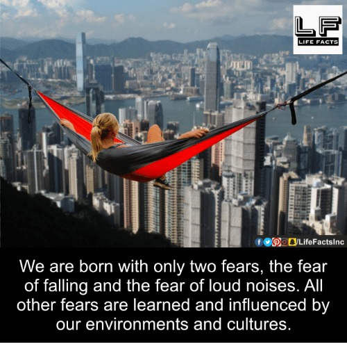 Facts, Life, and Memes: LIFE FACTS  We are born with only two fears, the fear  of falling and the fear of loud noises. All  other fears are learned and influenced by  our environments and cultures.