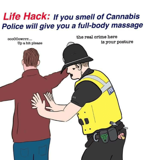Aid: Life Hack: If you smell of Cannabis  Police will give you a full-body massage  ooo00owrrr....  the real crime here  Up a bit please  is your posture  POL  LICE  THIRST  AID