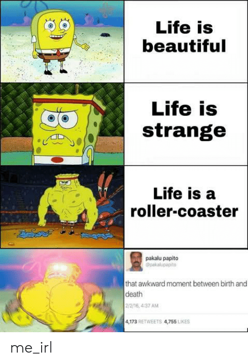 2 2: Life is  beautiful  Life is  strange  Life is a  roller-coaster  pakalu papito  Opakalupapito  that awkward moment between birth and  death  2/2/16, 4:37 AM  4,173 RETWEETS 4,755 LIKES me_irl