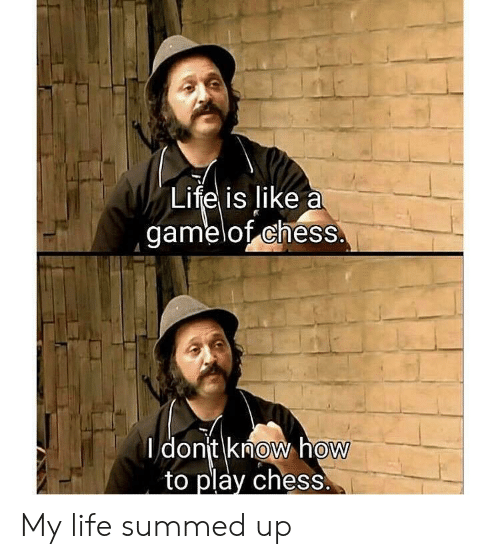 Summed Up: Life is like a  gamelof chess  I dont know hoW  to play chess.  0  0 My life summed up