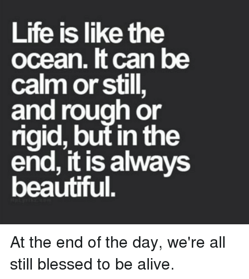 alvvays: Life is like the  ocean. can be  calm or still,  and rough or  rigid, but in the  end, it is alvvays  beautiful. At the end of the day, we're all still blessed to be alive.