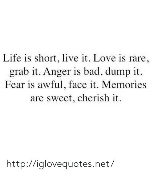 Bad, Life, and Love: Life is short, live it. Love is rare,  grab it. Anger is bad, dump it.  Fear is awful, face it. Memories  are sweet, cherish it. http://iglovequotes.net/