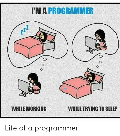 Life: Life of a programmer