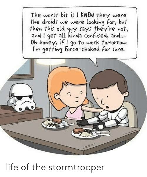 Stormtrooper: life of the stormtrooper