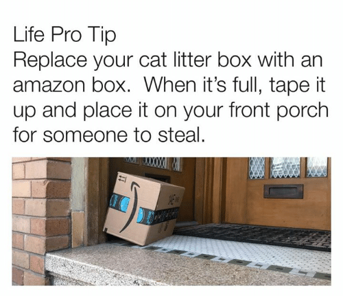 Pro Tip: Life Pro Tip  Replace your cat litter box with an  amazon box. When it's full, tape it  up and place it on your front porch  for someone to steal