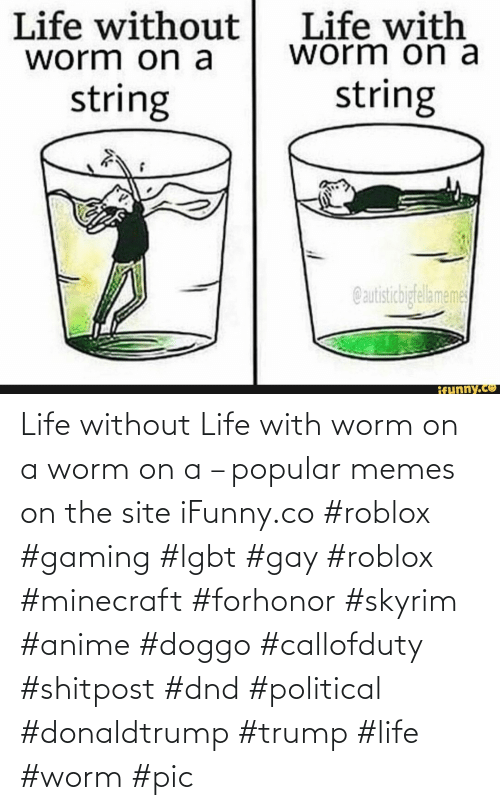 gay: Life without Life with worm on a worm on a – popular memes on the site iFunny.co #roblox #gaming #lgbt #gay #roblox #minecraft #forhonor #skyrim #anime #doggo #callofduty #shitpost #dnd #political #donaldtrump #trump #life #worm #pic