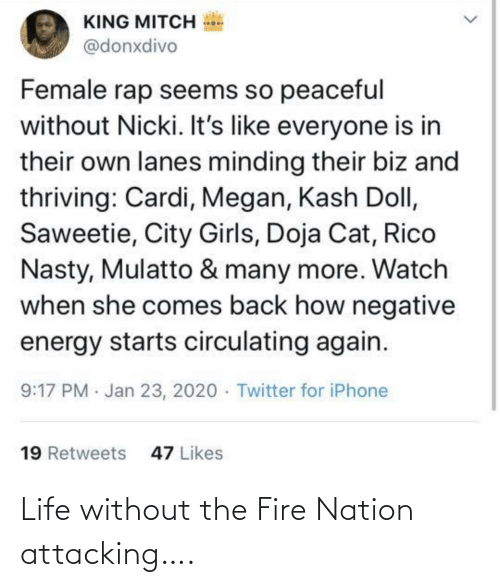 The Fire: Life without the Fire Nation attacking….