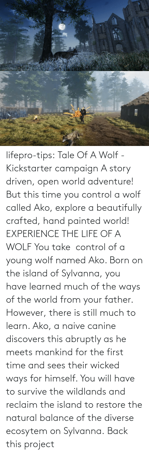 Survive: lifepro-tips: Tale Of A Wolf - Kickstarter campaign  A story driven, open world adventure! But this time you control a wolf  called Ako, explore a beautifully crafted, hand painted world!  EXPERIENCE THE LIFE OF A WOLF You take  control of a young wolf named Ako. Born on the island  of Sylvanna, you have learned much of the ways of the world from your  father. However, there is still much to learn. Ako, a naive canine  discovers this abruptly as he meets mankind for the first time and sees  their wicked ways for himself. You will have to survive the wildlands  and reclaim the island to restore the natural balance of the diverse  ecosytem on Sylvanna.   Back this project