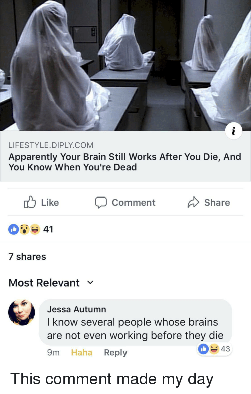 youre dead: LIFESTYLE.DIPLY.COM  Apparently Your Brain Still Works After You Die, And  You Know When You're Dead  Comment  Share  7 shares  Most Relevant ﹀  Jessa Autumn  I know several people whose brains  are not even working before they die  9m Haha Reply  43 This comment made my day