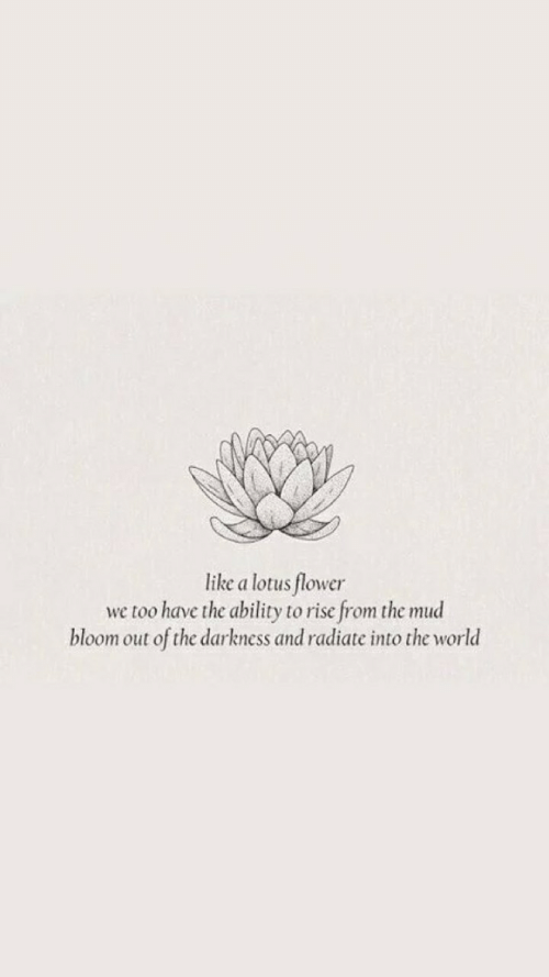 mud: like a lotus flower  we too have the ability to rise from the mud  bloom out of the darkness and radiate into the world