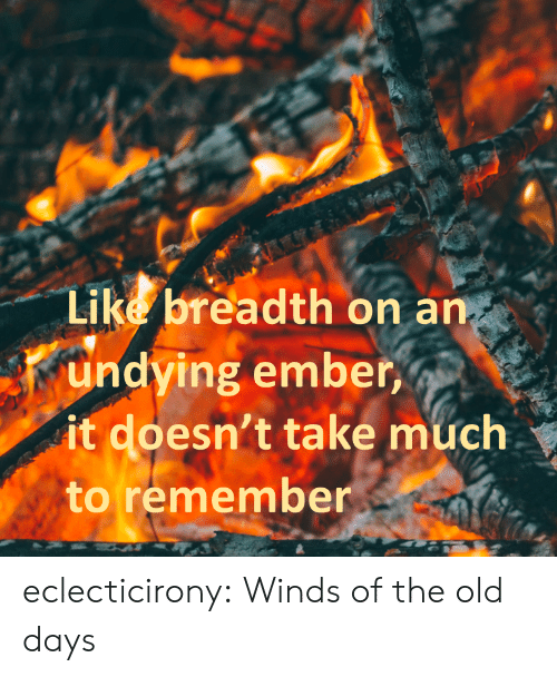 Winds: Like breadth on an  undying ember,  it doesn't take much  to remember eclecticirony:    Winds of the old days