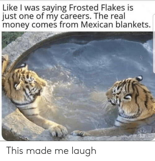 Frosted: Like I was saying Frosted Flakes is  just one of my careers. The real  money comes from Mexican blankets. This made me laugh